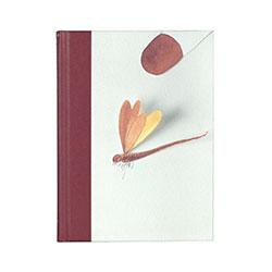 portada libro Microcosmos de Miquel Navarro
