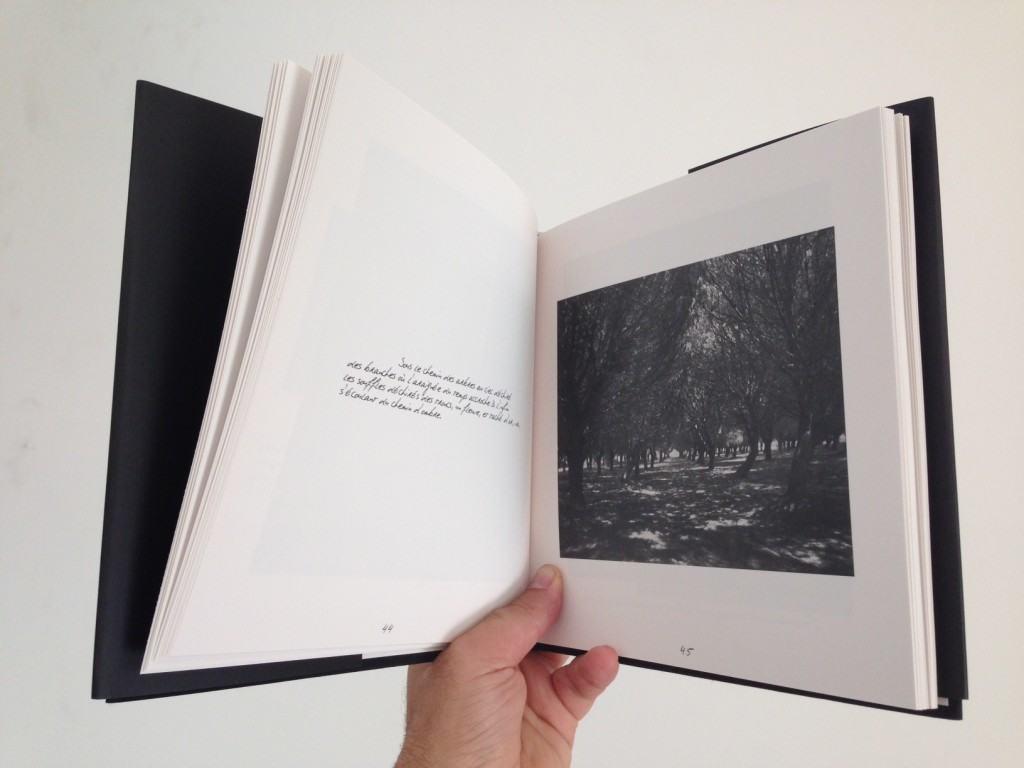 El Libro 'Vue de l'instant' de fotografías de Thierry Valencin. 1er premio de impresión offset a un color. Por cierto que sus fotos se pueden ver ahora en Railowsky y en el IVF.
