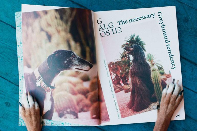 En nuestros talleres imprimimos todo tipo de revistas y magazines.