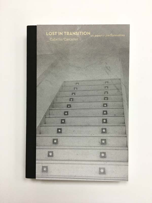 portada en papel del libro impreso lost in transition