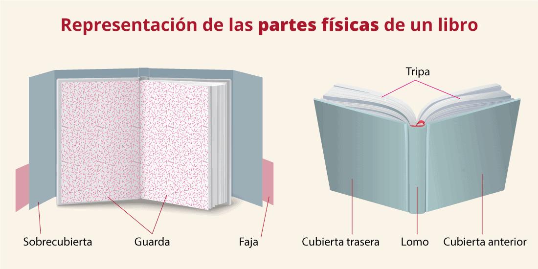 Representación o infografía de las partes físicas o externas de un libro