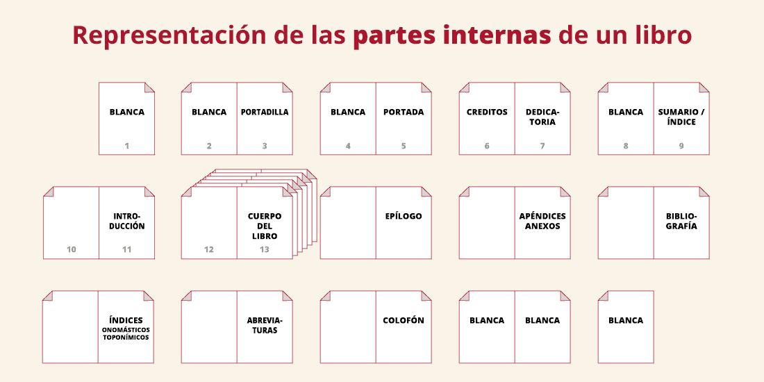representación de las partes internas de un libro