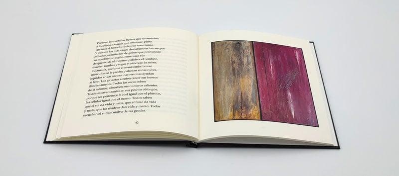 libro abierto de poesia con fotografias