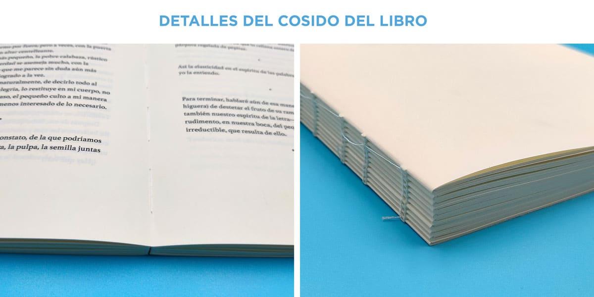 Detalles del cosido del libro